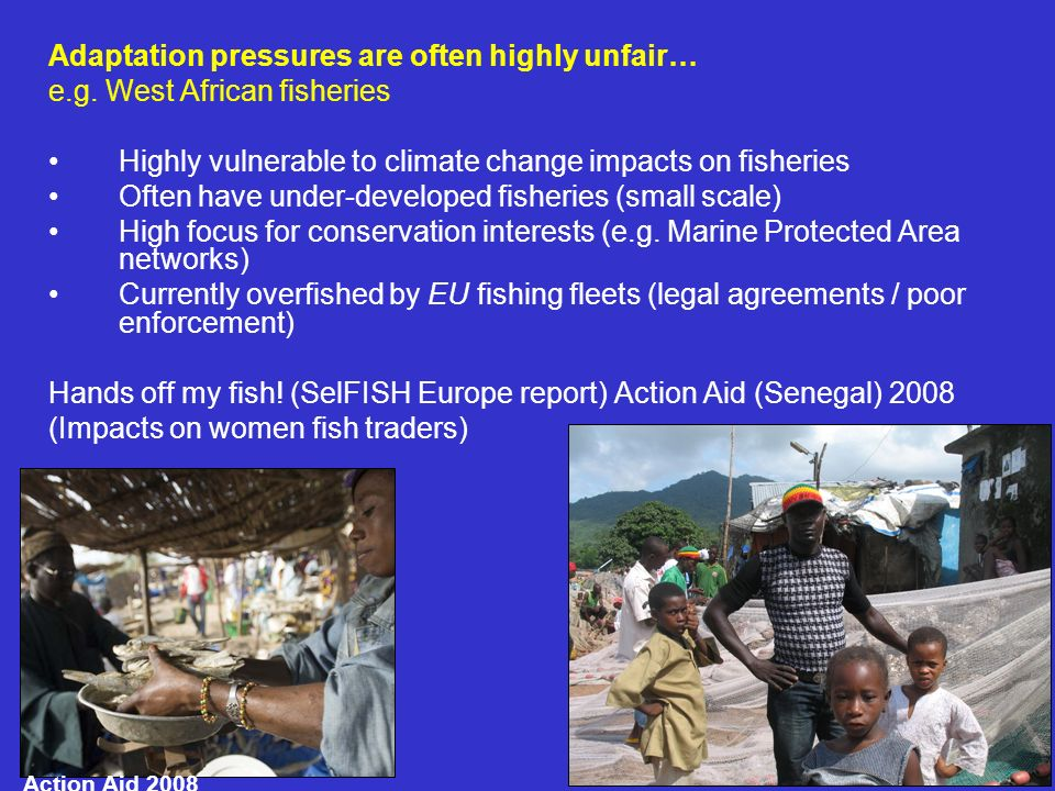 2.Fisheries in crisis - an opportunity to capture learning?