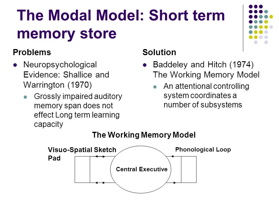 The Modal Model: Short term memory store Problems Neuropsychological Evidence: Shallice and Warrington (1970) Grossly impaired auditory memory span does not effect Long term learning capacity Solution Baddeley and Hitch (1974) The Working Memory Model An attentional controlling system coordinates a number of subsystems Central Executive Phonological Loop Visuo-Spatial Sketch Pad The Working Memory Model