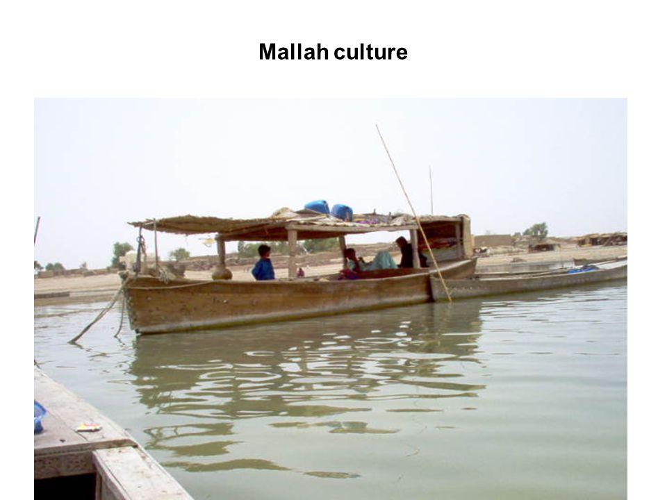 Mallah culture