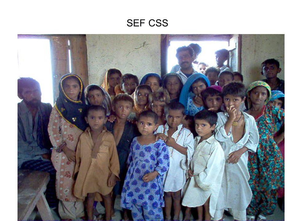 SEF CSS