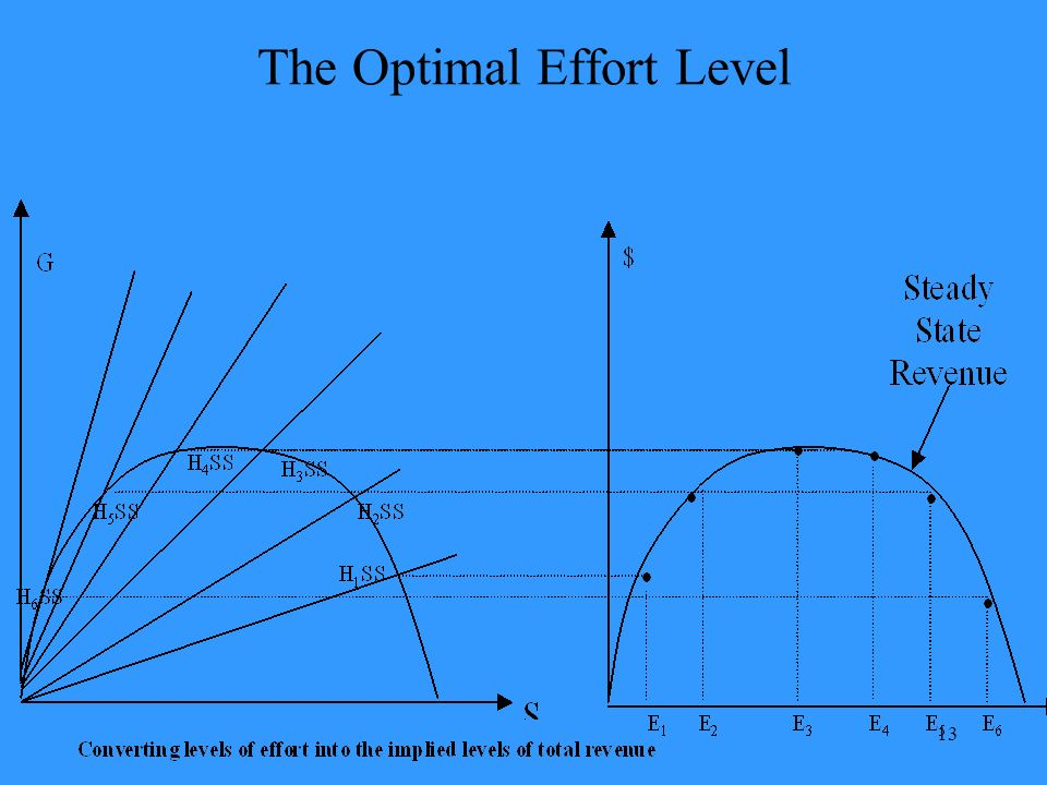 13 The Optimal Effort Level