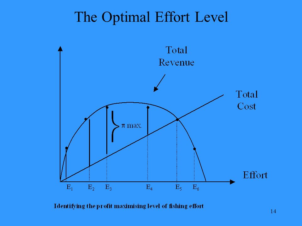 14 The Optimal Effort Level