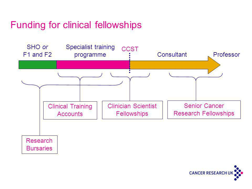 Funding for clinical fellowships Professor SHO or F1 and F2 Specialist training programme Consultant CCST Clinical Training Accounts Clinician Scientist Fellowships Senior Cancer Research Fellowships Research Bursaries