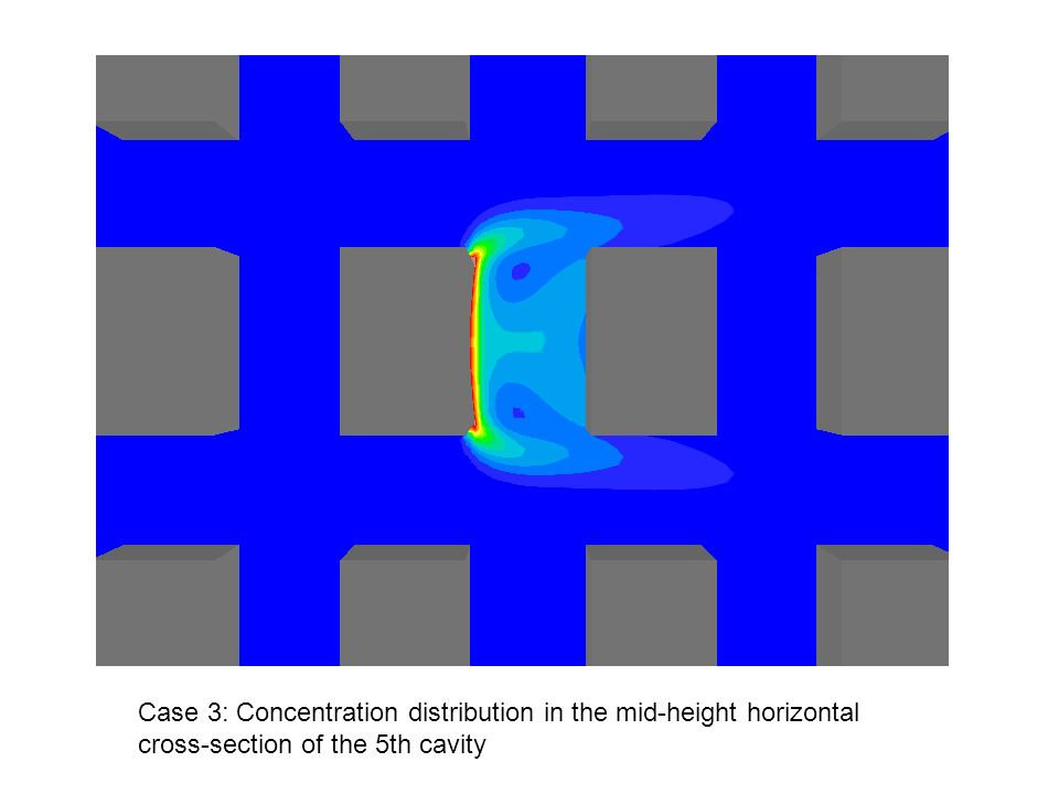 Case 3: Concentration distribution in the mid-height horizontal cross-section of the 5th cavity