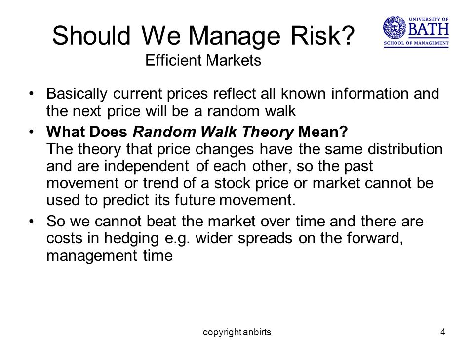 copyright anbirts4 Should We Manage Risk.