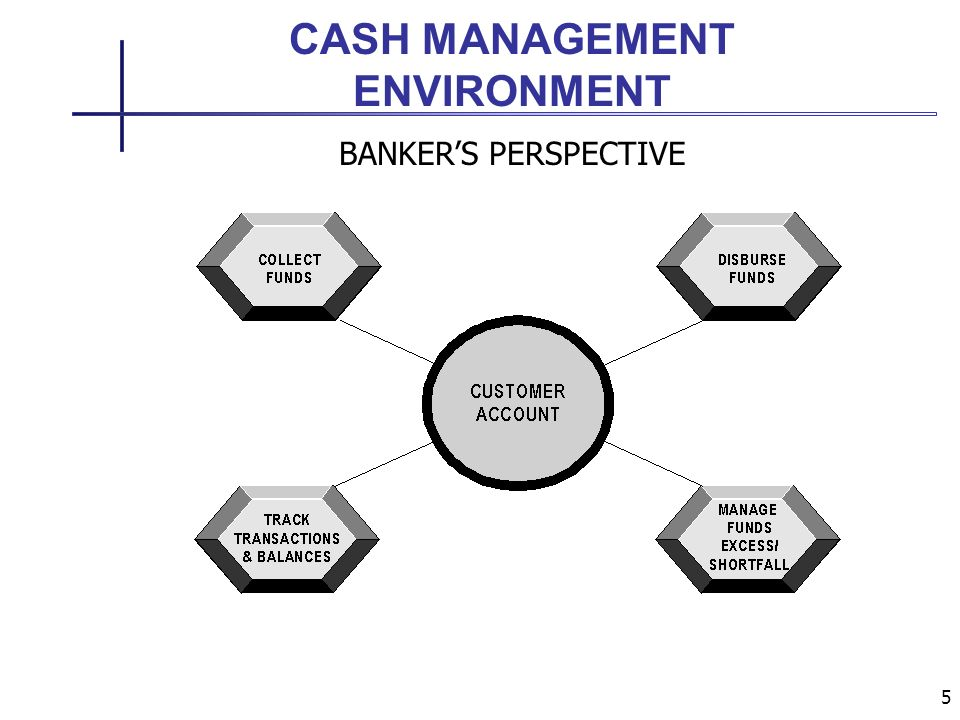 5 CASH MANAGEMENT ENVIRONMENT BANKERS PERSPECTIVE