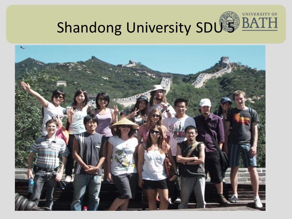 Shandong University SDU 5