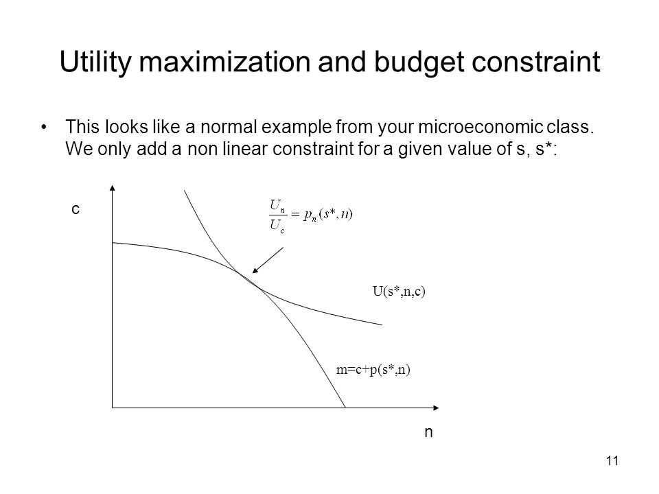 11 Utility maximization and budget constraint This looks like a normal example from your microeconomic class. We only add a non linear constraint for