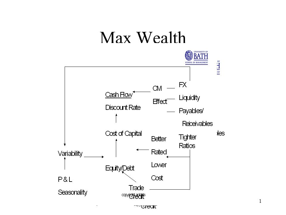 copyright anbirts1 Max Wealth