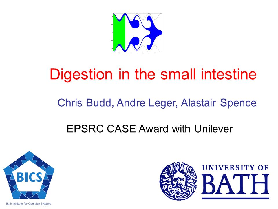 Digestion in the small intestine Chris Budd, Andre Leger, Alastair Spence EPSRC CASE Award with Unilever