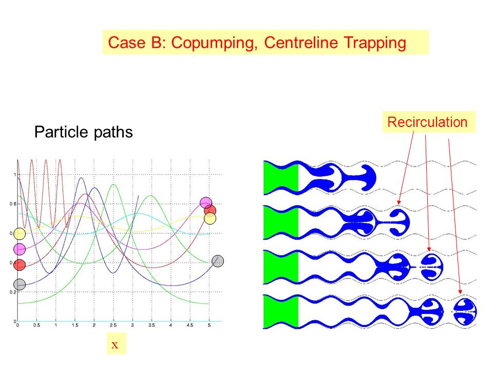 x Case B: Copumping, Centreline Trapping Recirculation Particle paths