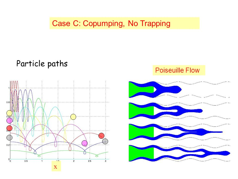 x Case C: Copumping, No Trapping Poiseuille Flow Particle paths