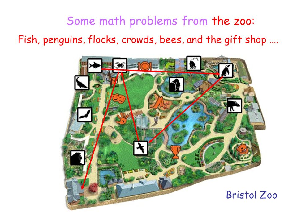 Or maybe a trip to the Zoo