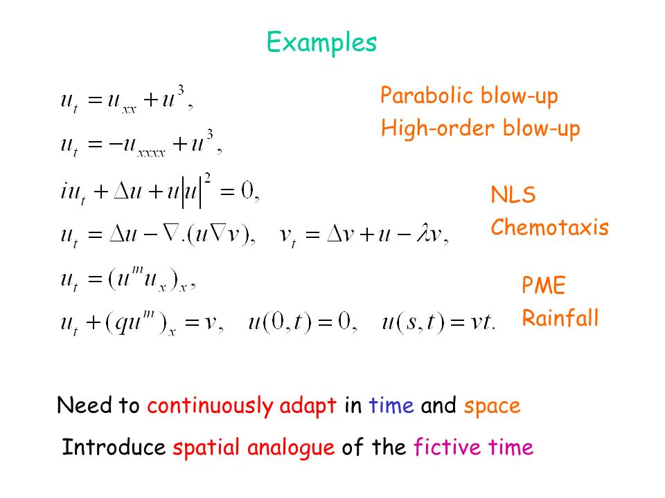 Examples Parabolic blow-up High-order blow-up NLS Chemotaxis PME Rainfall Need to continuously adapt in time and space Introduce spatial analogue of t