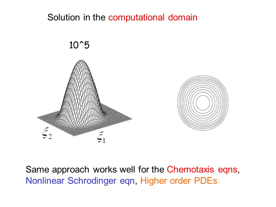 Solution in the computational domain 10^5 Same approach works well for the Chemotaxis eqns, Nonlinear Schrodinger eqn, Higher order PDEs