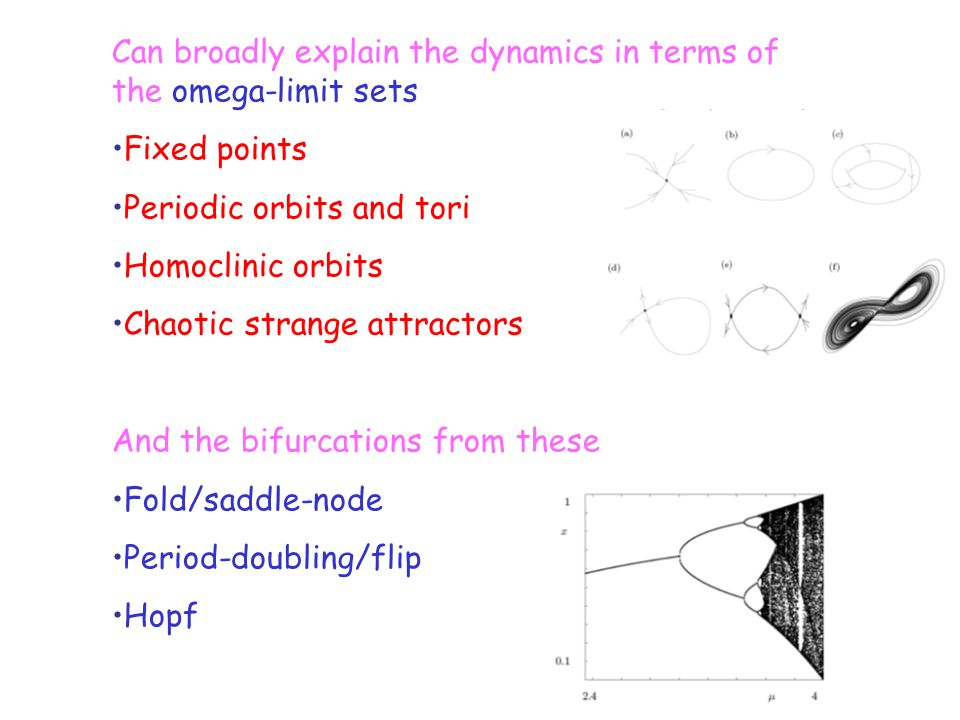 Can broadly explain the dynamics in terms of the omega-limit sets Fixed points Periodic orbits and tori Homoclinic orbits Chaotic strange attractors A