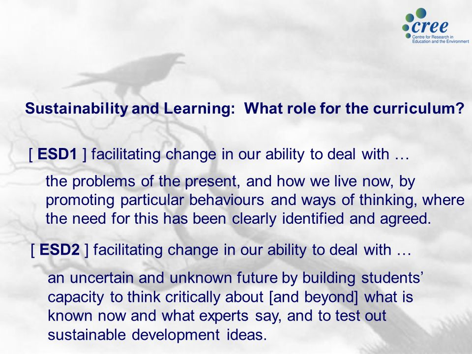 Sustainability and Learning: What role for the curriculum.