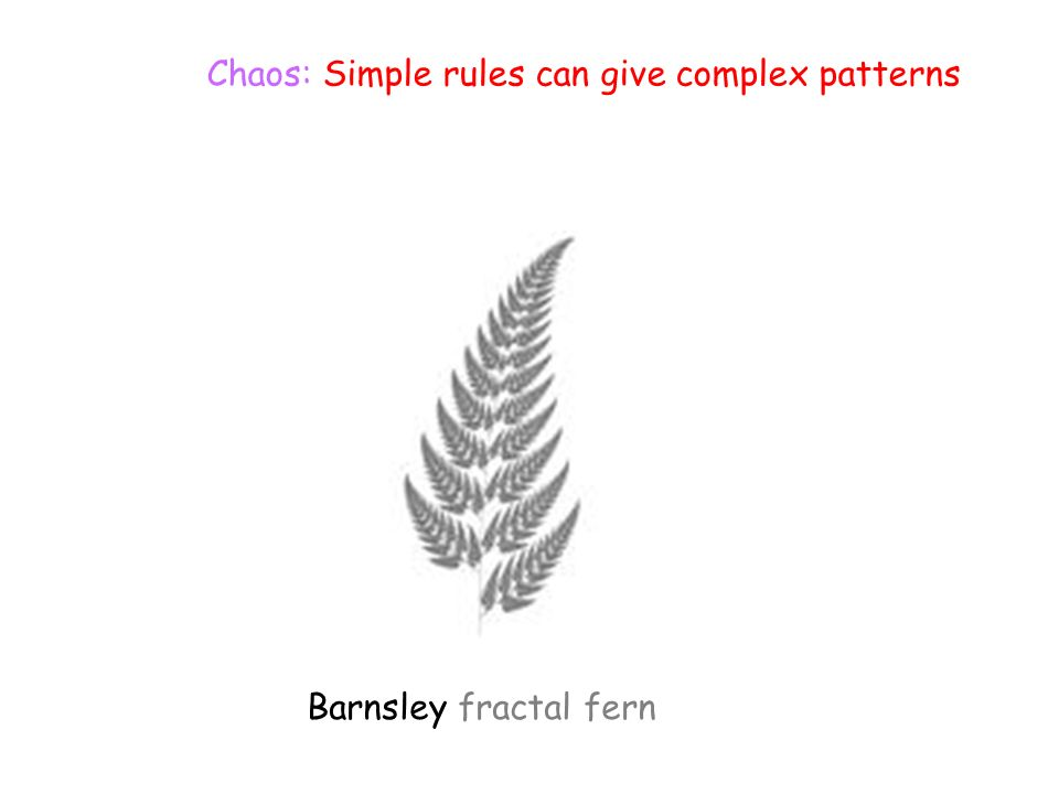Chaos: Simple rules can give complex patterns Barnsley fractal fern