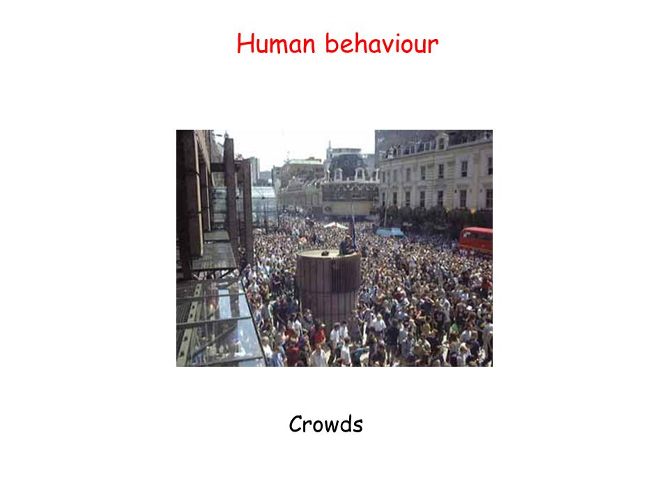 Human behaviour Crowds