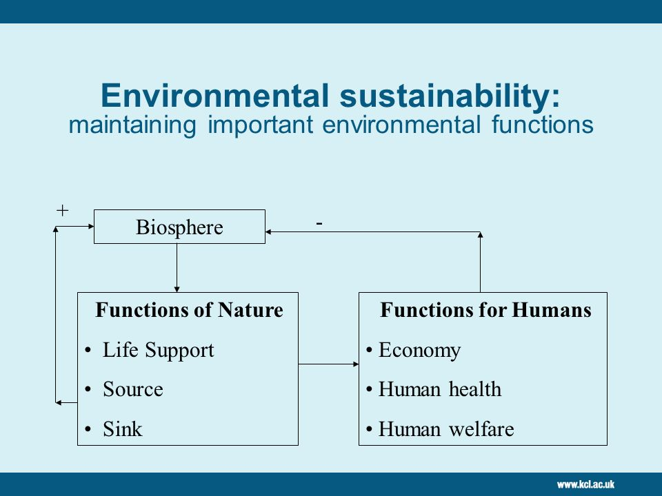 Environmental sustainability: maintaining important environmental functions Biosphere Functions of Nature Life Support Source Sink Functions for Humans Economy Human health Human welfare + -
