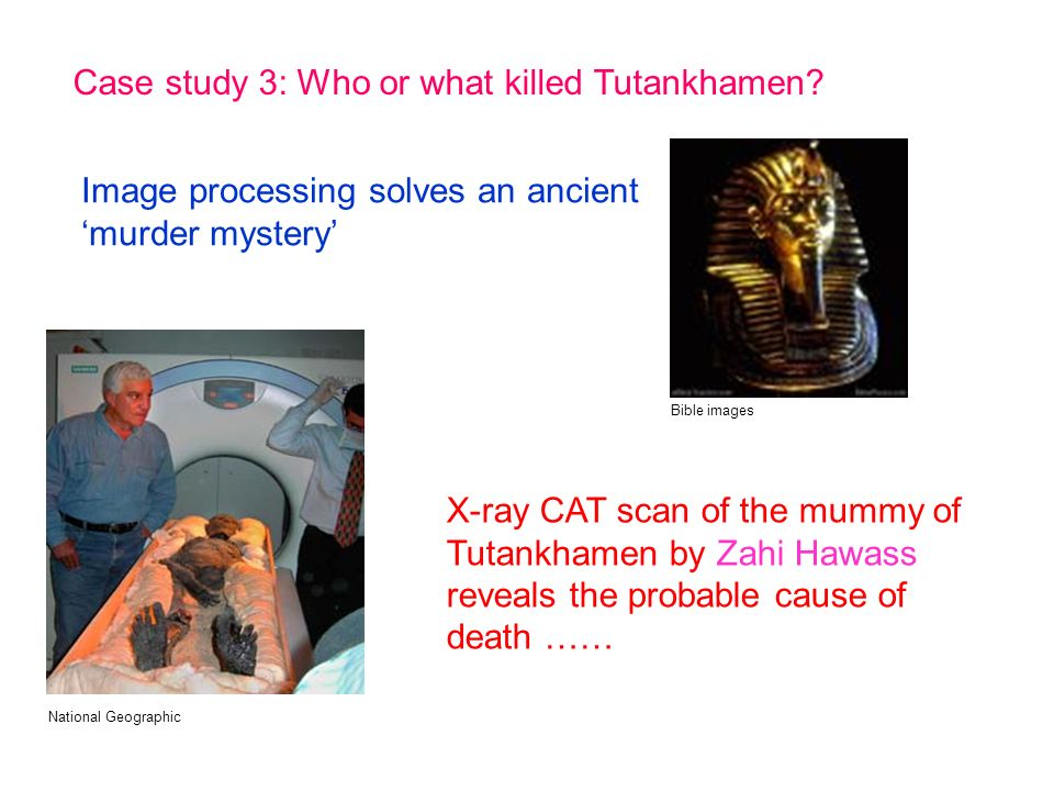 Case study 3: Who or what killed Tutankhamen.