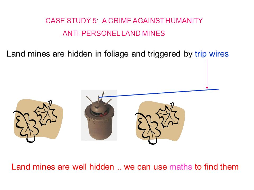 CASE STUDY 5: A CRIME AGAINST HUMANITY ANTI-PERSONEL LAND MINES Land mines are hidden in foliage and triggered by trip wires Land mines are well hidden..