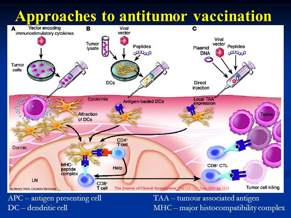 Approaches to antitumor vaccination APC – antigen presenting cellTAA – tumour associated antigen DC – dendritic cellMHC – major histocompatibility com