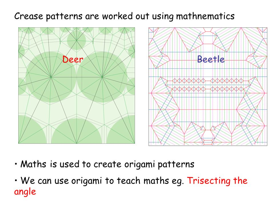 DeerBeetle Crease patterns are worked out using mathnematics Maths is used to create origami patterns We can use origami to teach maths eg.