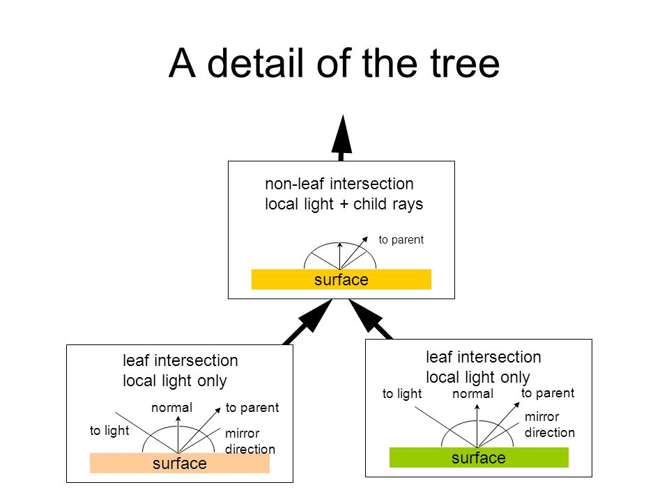 A detail of the tree surface normalto light mirror direction to parent leaf intersection local light only surface normal to light mirror direction to