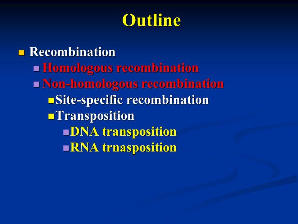 Outline Recombination Recombination Homologous recombination Homologous recombination Non-homologous recombination Non-homologous recombination Site-s
