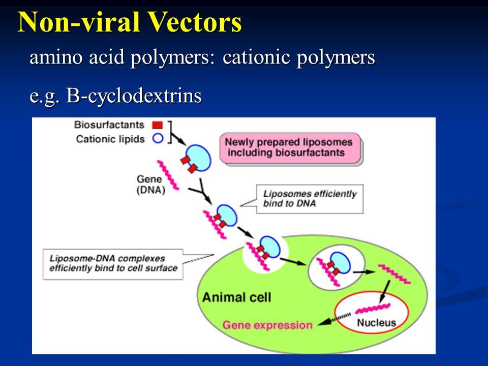 amino acid polymers: cationic polymers e.g. B-cyclodextrins Non-viral Vectors