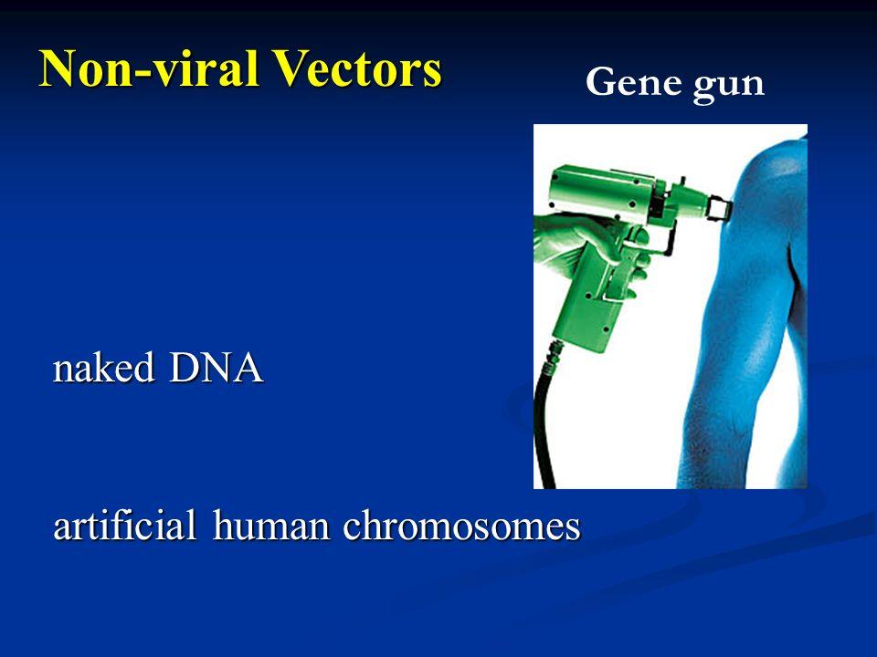 naked DNA artificial human chromosomes Non-viral Vectors Gene gun