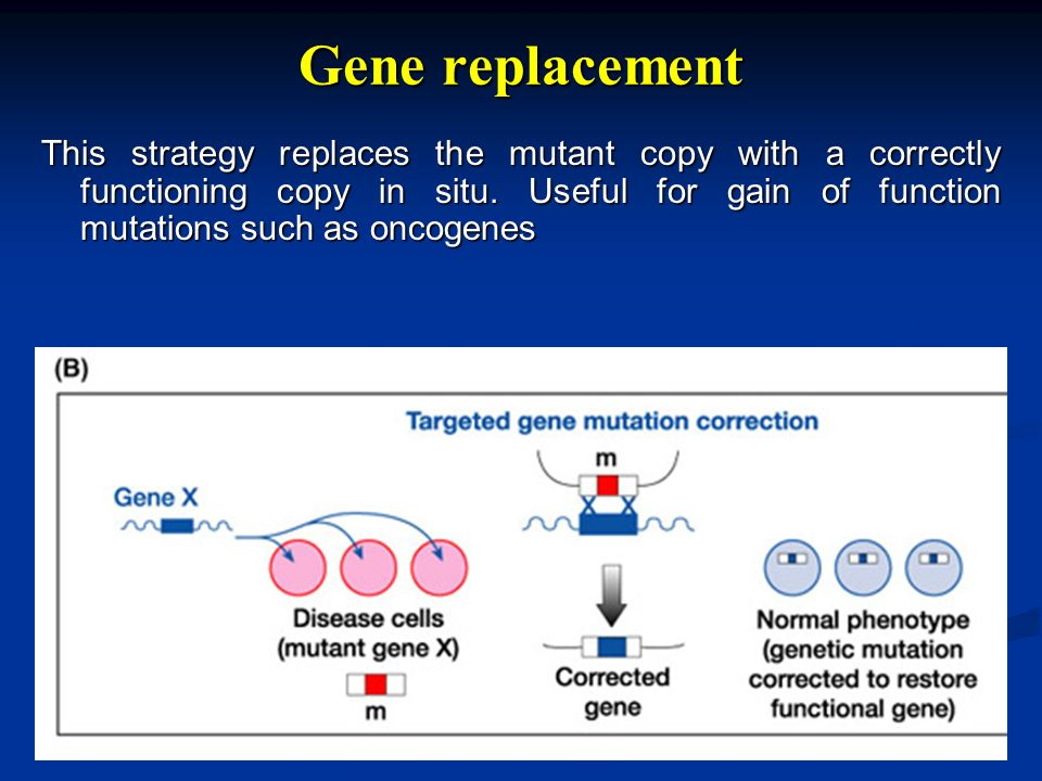 Gene replacement This strategy replaces the mutant copy with a correctly functioning copy in situ. Useful for gain of function mutations such as oncog