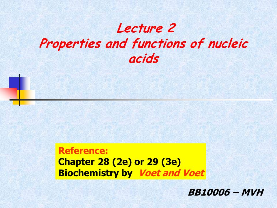 Lecture 2 Properties and functions of nucleic acids BB10006 – MVH Reference: Chapter 28 (2e) or 29 (3e) Biochemistry by Voet and Voet
