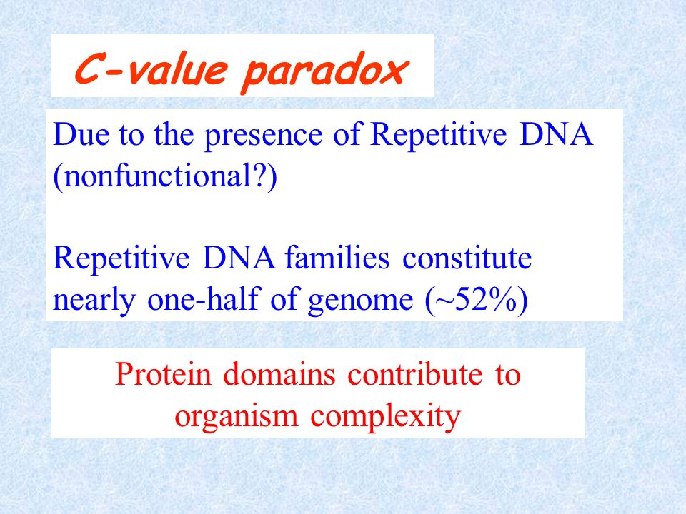 C-value paradox Due to the presence of Repetitive DNA (nonfunctional?) Repetitive DNA families constitute nearly one-half of genome (~52%) Protein dom