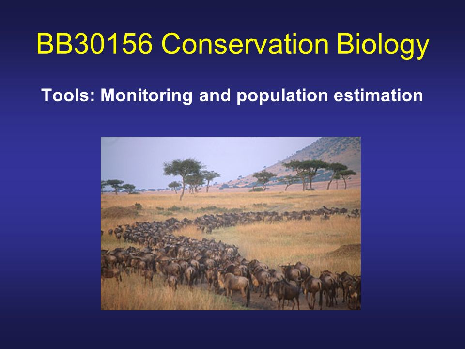 BB30156 Conservation Biology Tools: Monitoring and population estimation