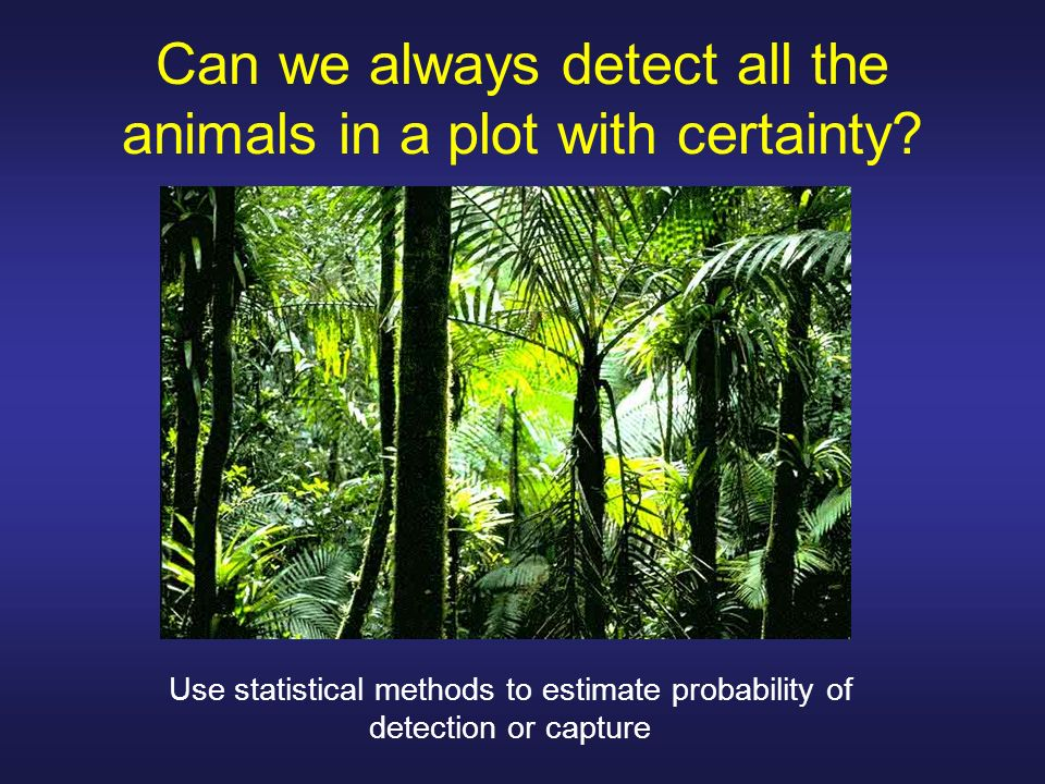 Can we always detect all the animals in a plot with certainty? Use statistical methods to estimate probability of detection or capture
