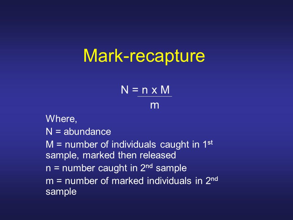 Mark-recapture N = n x M m Where, N = abundance M = number of individuals caught in 1 st sample, marked then released n = number caught in 2 nd sample