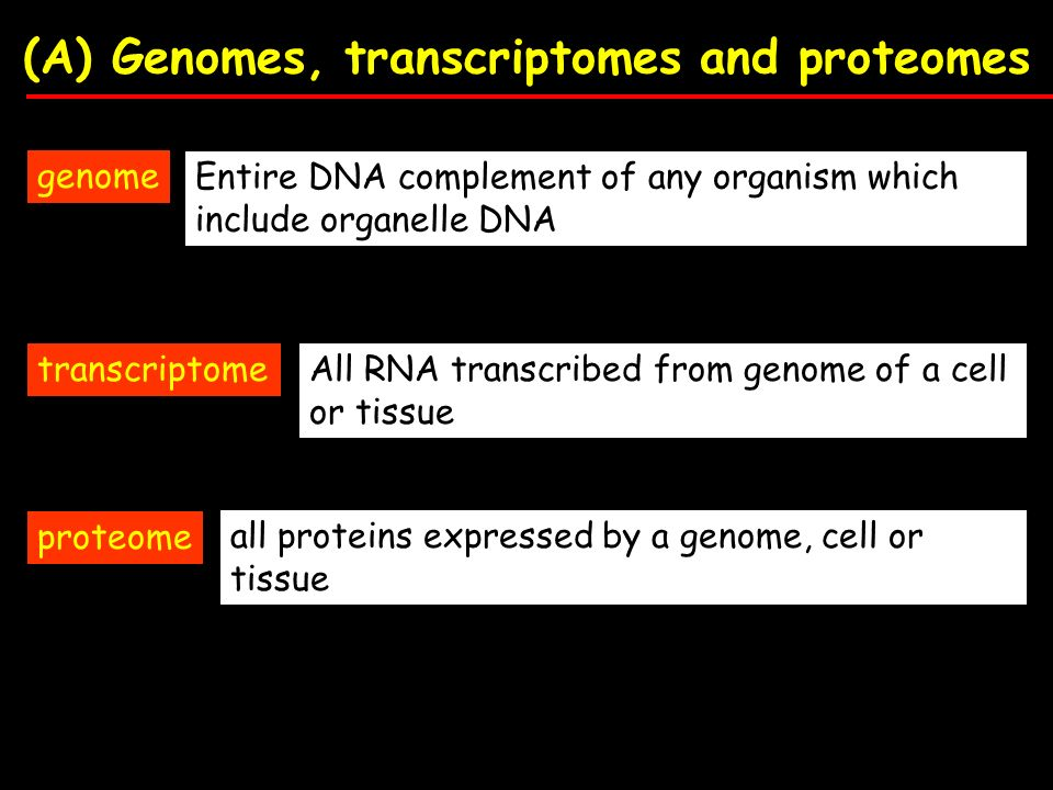 (A) Genomes, transcriptomes and proteomes genome transcriptome proteome Entire DNA complement of any organism which include organelle DNA All RNA transcribed from genome of a cell or tissue all proteins expressed by a genome, cell or tissue