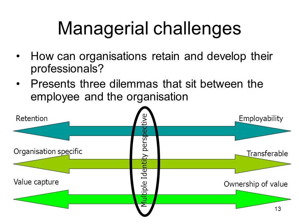 13 Managerial challenges How can organisations retain and develop their professionals? Presents three dilemmas that sit between the employee and the o