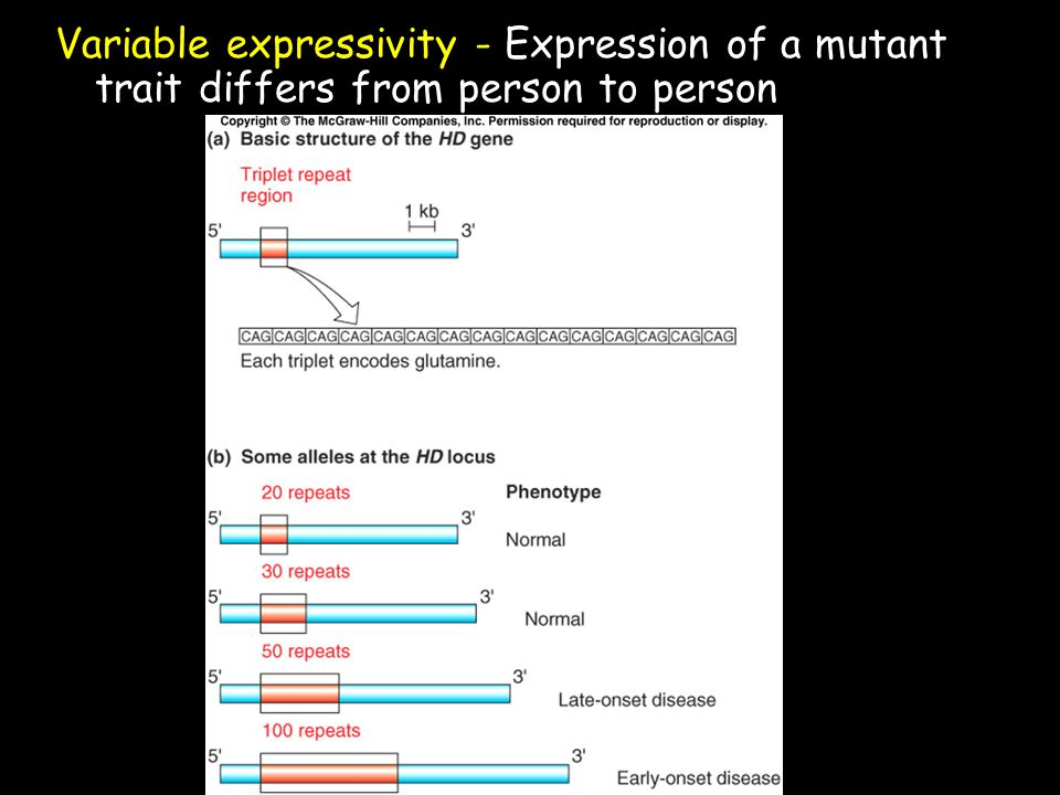 Variable expressivity - Expression of a mutant trait differs from person to person