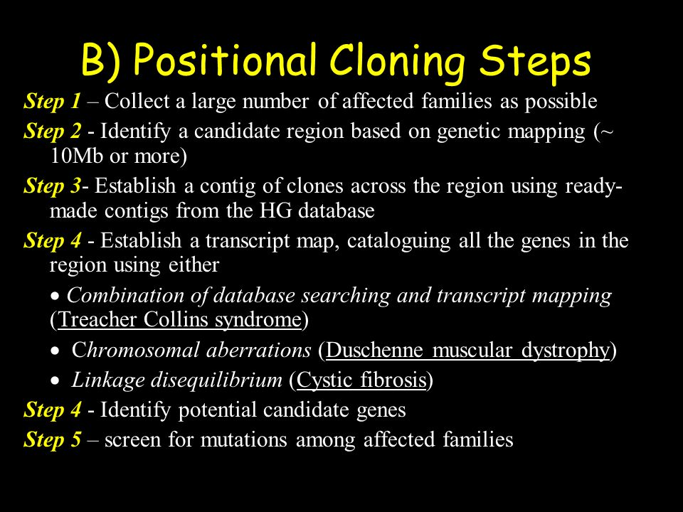 B) Positional Cloning Steps Step 1 – Collect a large number of affected families as possible Step 2 - Identify a candidate region based on genetic map