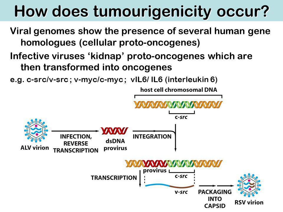 How does tumourigenicity occur.