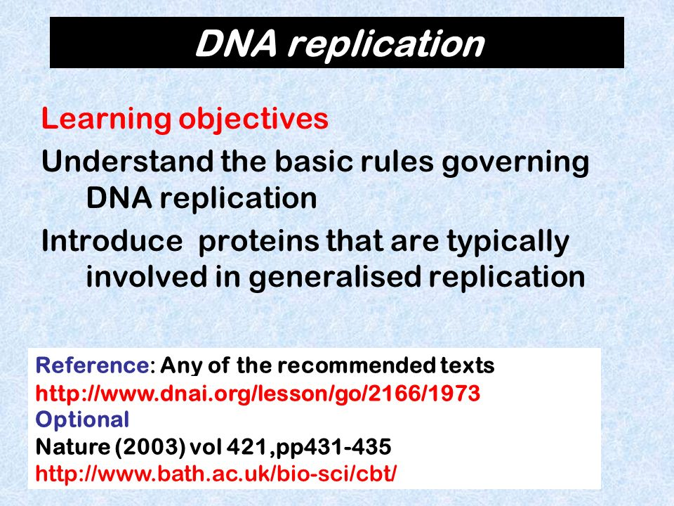 DNA replication Learning objectives Understand the basic rules governing DNA replication Introduce proteins that are typically involved in generalised