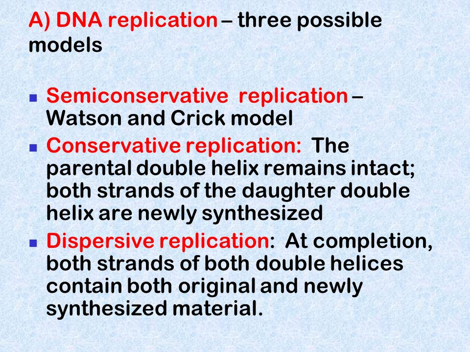A) DNA replication – three possible models Semiconservative replication – Watson and Crick model Conservative replication: The parental double helix r