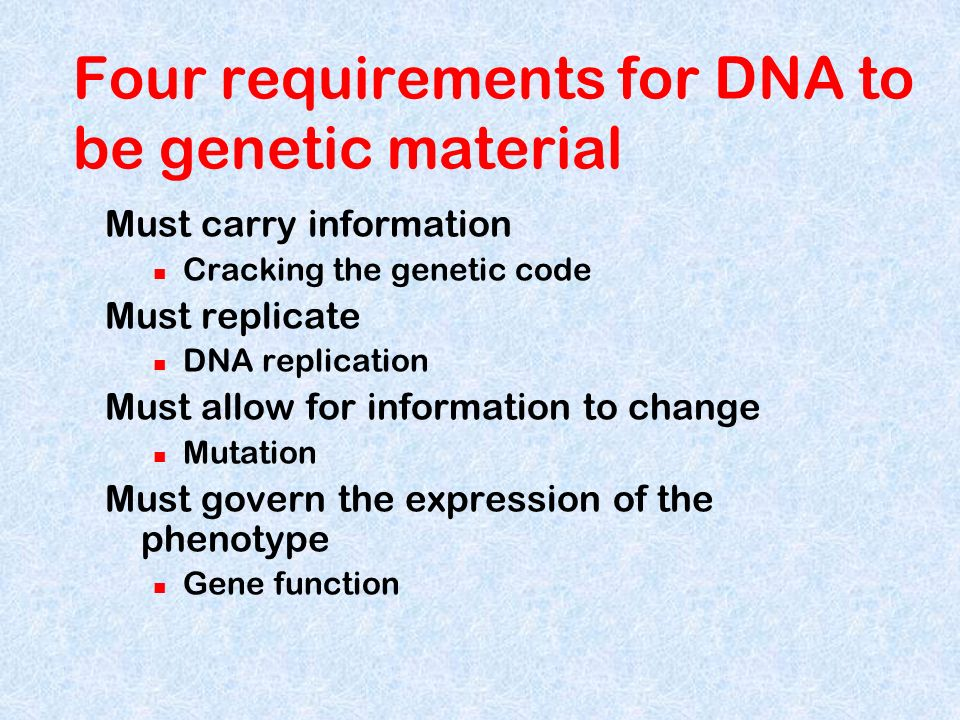 Much of DNAs sequence-specific information is accessible only when the double helix is unwound Proteins read the DNA sequence of nucleotides as the DNA helix unwinds.