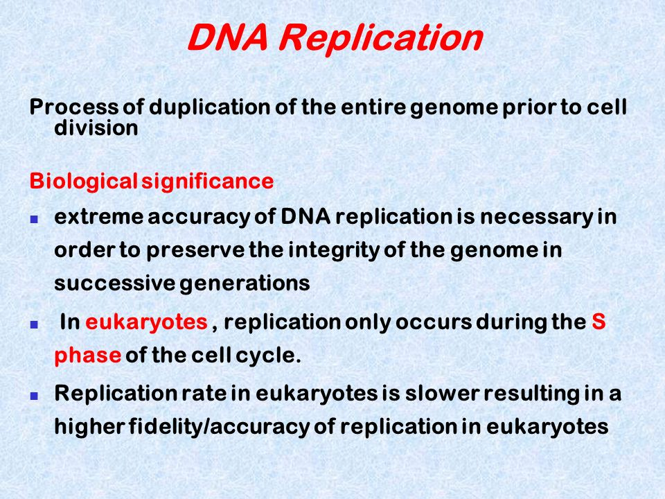 F) RNA primers required