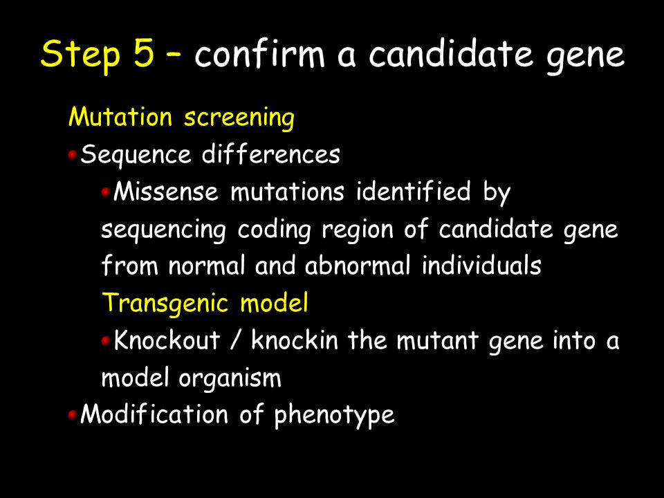 Step 5 – confirm a candidate gene Mutation screening Sequence differences Missense mutations identified by sequencing coding region of candidate gene from normal and abnormal individuals Transgenic model Knockout / knockin the mutant gene into a model organism Modification of phenotype