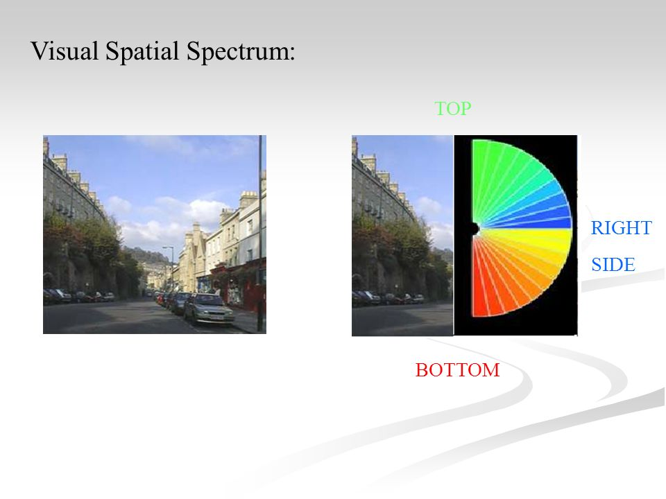 TOP RIGHT SIDE BOTTOM Visual Spatial Spectrum: