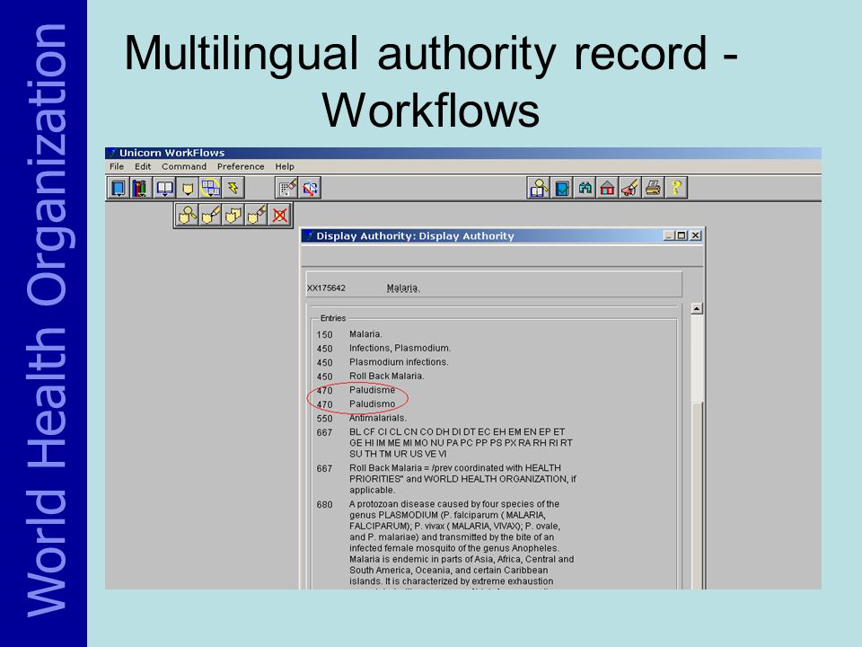 Multilingual authority record - Workflows World Health Organization